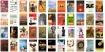 50 women writers copy
