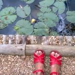 carli feet ID