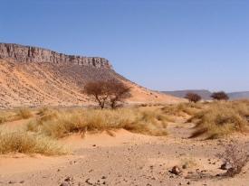 Sahara Desert picture
