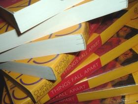 Things_Fall_Apart_books_02